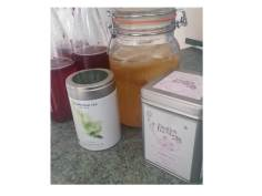 Kombucha brewing with white and green tea